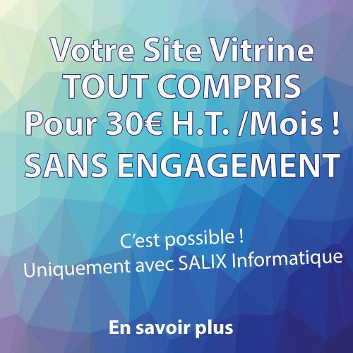 Salix Information : Création de Site Internet